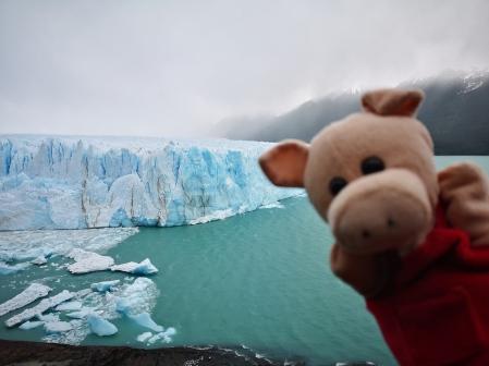 Chouchou au Perito Moreno